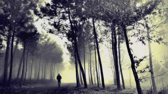 Man walking alone in the dark woods