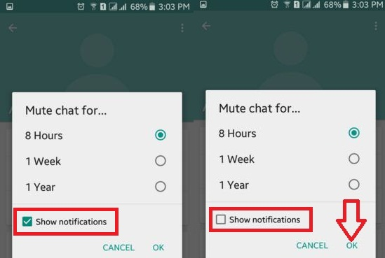 Showing how to mute a chat in whatsapp