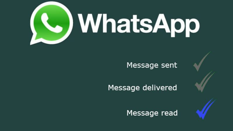 Showing which checks you'll see if a message is sent, delivered or read in whatsapp