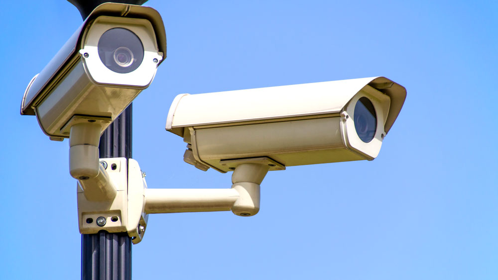 Two security cameras perched on a pole